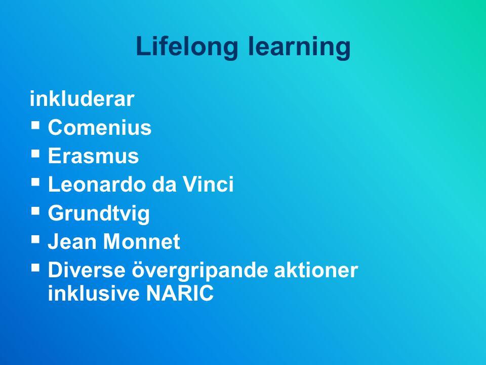 Lifelong learning inkluderar  Comenius  Erasmus  Leonardo da Vinci  Grundtvig  Jean Monnet  Diverse övergripande aktioner inklusive NARIC