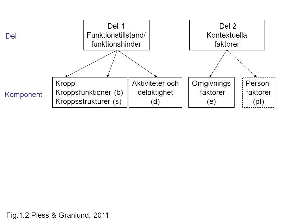Del 2 Kontextuella faktorer Del 1 Funktionstillstånd/ funktionshinder Aktiviteter och delaktighet (d) Omgivnings -faktorer (e) Person- faktorer (pf) Del Komponent Kropp: Kroppsfunktioner (b) Kroppsstrukturer (s) Fig.1.2 Pless & Granlund, 2011