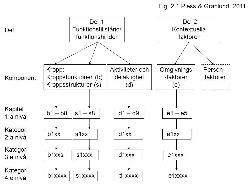 Del 2 Kontextuella faktorer Del 1 Funktionstillstånd/ funktionshinder Aktiviteter och delaktighet (d) Omgivnings -faktorer (e) Person- faktorer Del Komponent Kapitel 1:a nivå b1 – b8s1 – s8 d1 – d9 e1 – e5 Kategori 2:a nivå Kategori 3:e nivå Kategori 4:e nivå s1xxb1xx b1xxs s1xxx b1xxxxs1xxxx d1xx d1xxx d1xxxx e1xx e1xxx e1xxxx Kropp: Kroppsfunktioner (b) Kroppsstrukturer (s) Fig.