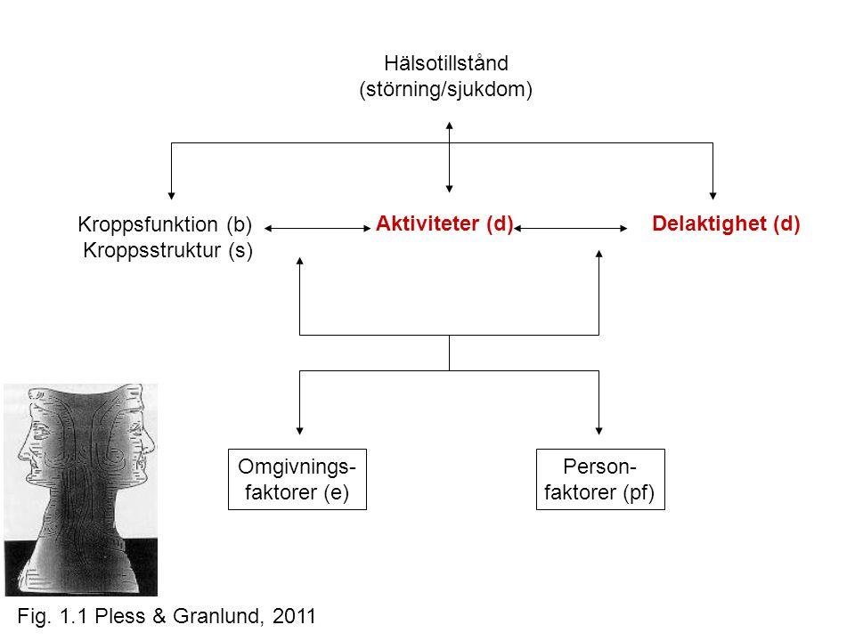 Hälsotillstånd (störning/sjukdom) Aktiviteter (d) Kroppsfunktion (b) Kroppsstruktur (s) Delaktighet (d) Omgivnings- faktorer (e) Person- faktorer (pf) Fig.