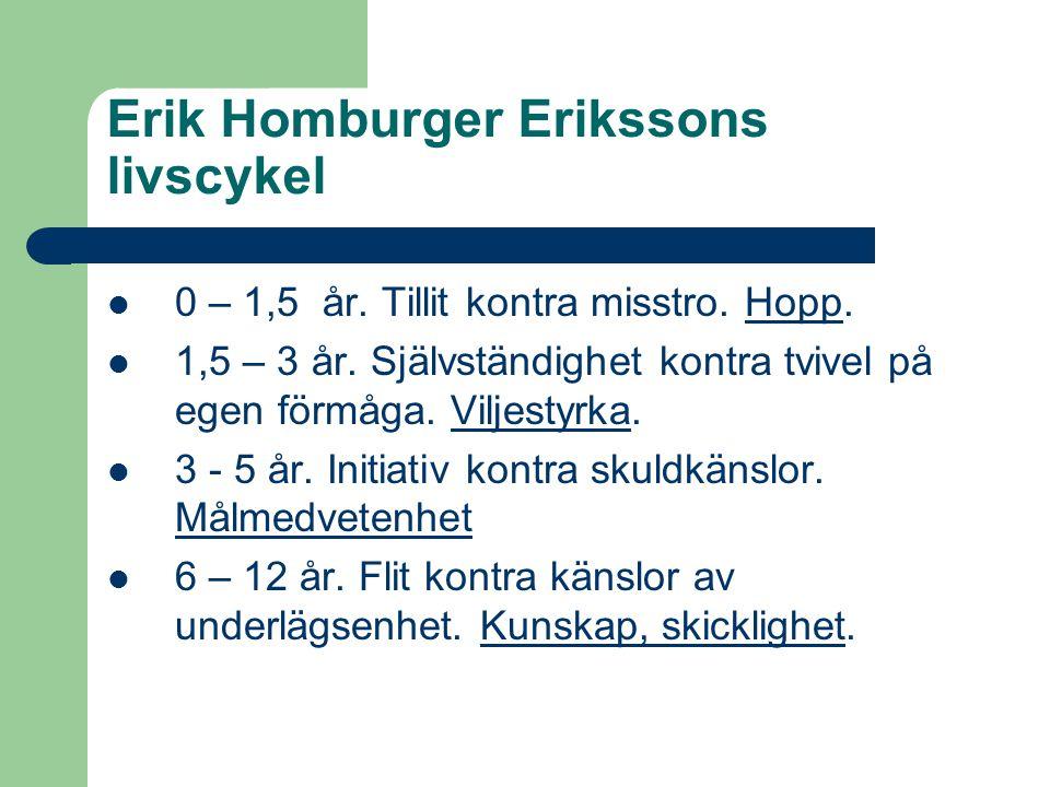 Erik Homburger Erikssons livscykel  0 – 1,5 år. Tillit kontra misstro. Hopp.  1,5 – 3 år. Självständighet kontra tvivel på egen förmåga. Viljestyrka
