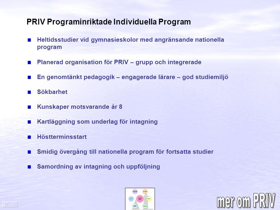 PRIV Programinriktade Individuella Program Heltidsstudier vid gymnasieskolor med angränsande nationella program Planerad organisation för PRIV – grupp