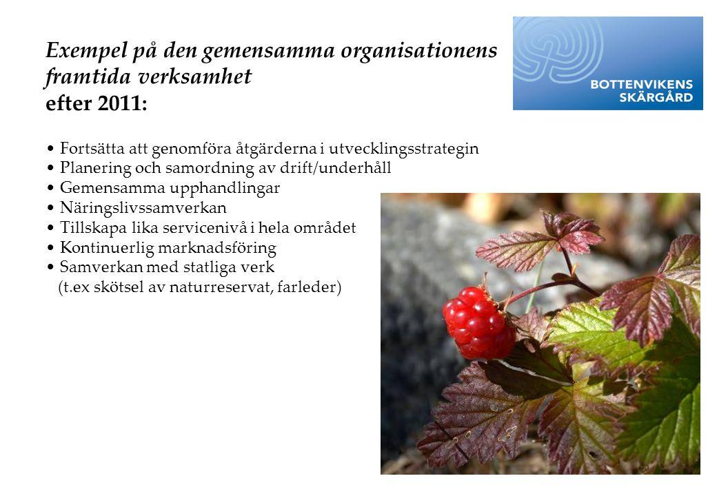 Exempel på den gemensamma organisationens framtida verksamhet efter 2011: • Fortsätta att genomföra åtgärderna i utvecklingsstrategin • Planering och