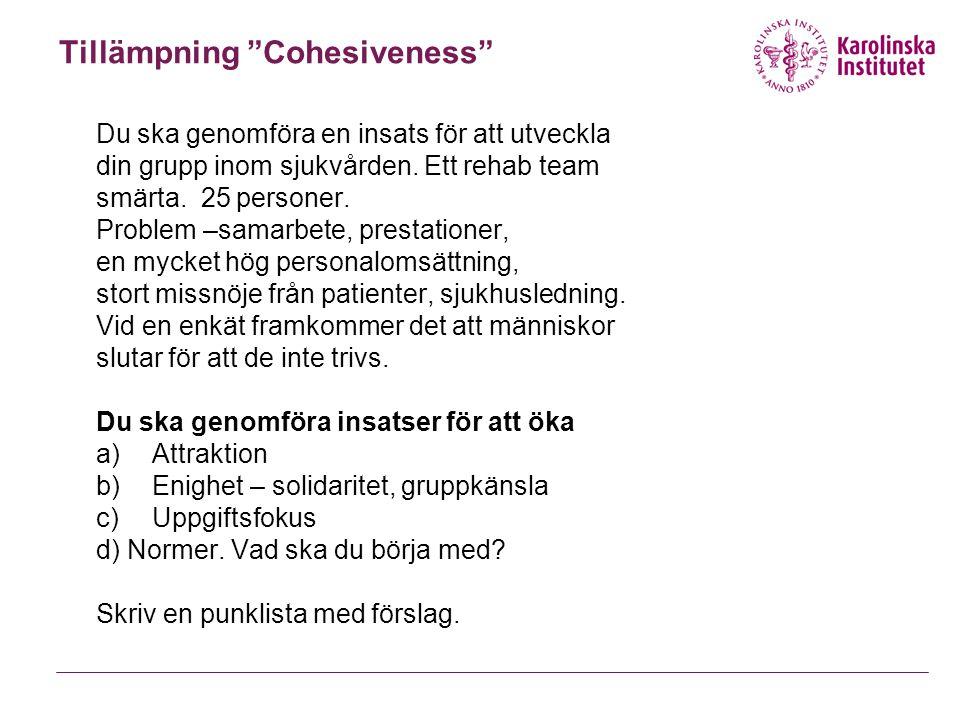 """Tillämpning """"Cohesiveness"""" Du ska genomföra en insats för att utveckla din grupp inom sjukvården. Ett rehab team smärta. 25 personer. Problem –samarbe"""