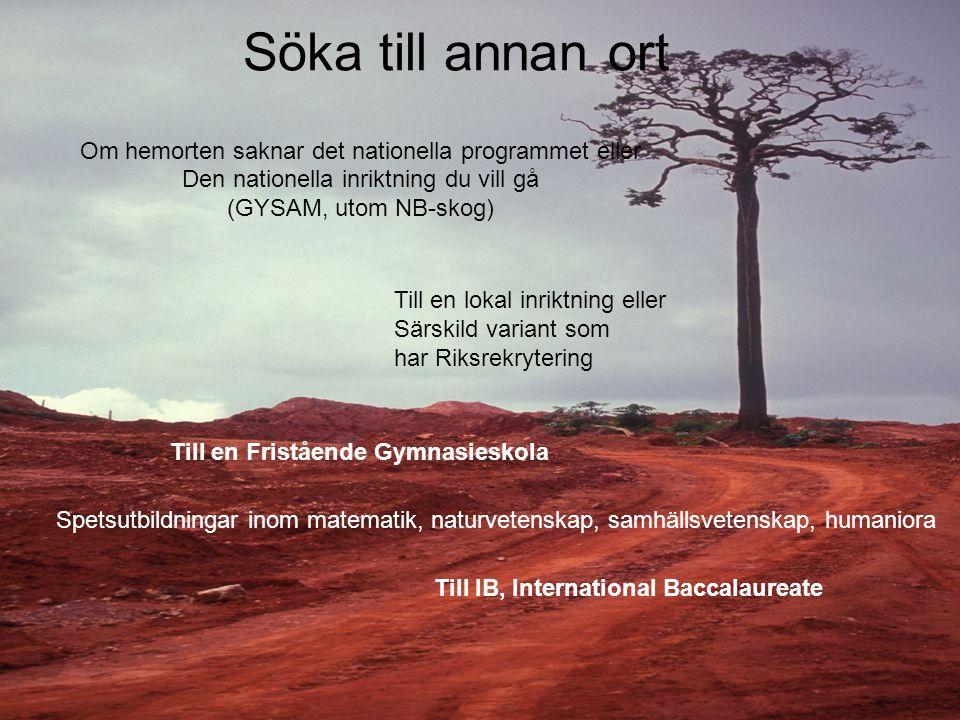 Söka till annan ort Om hemorten saknar det nationella programmet eller Den nationella inriktning du vill gå (GYSAM, utom NB-skog) Till en lokal inrikt