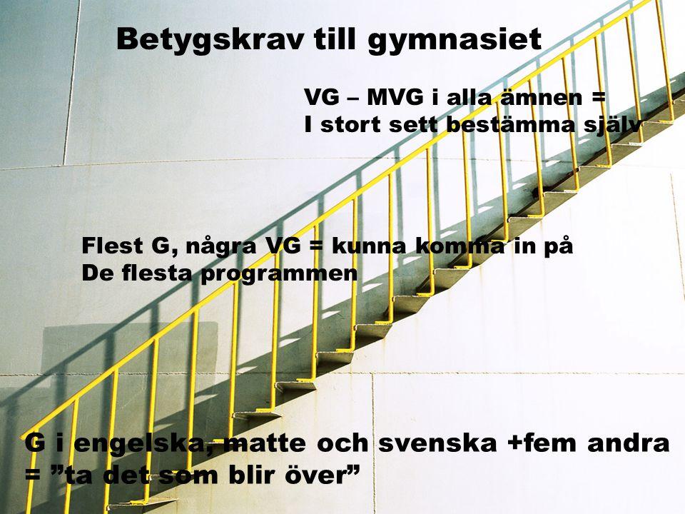 Betygskrav till gymnasiet VG – MVG i alla ämnen = I stort sett bestämma själv Flest G, några VG = kunna komma in på De flesta programmen G i engelska,