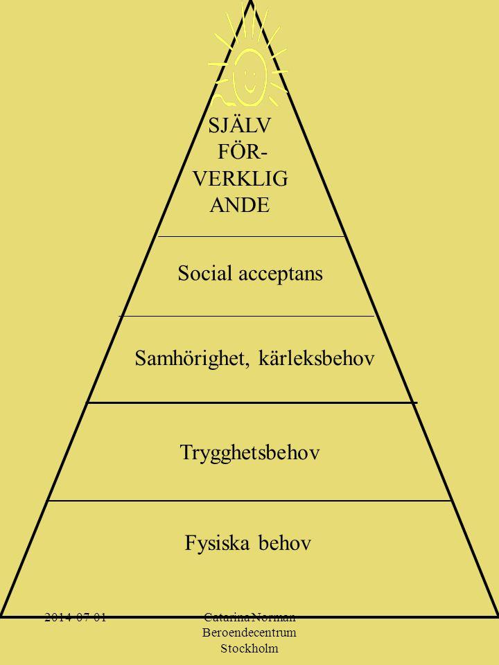 Vad behöver vi ta hänsyn till i en svensk modell.