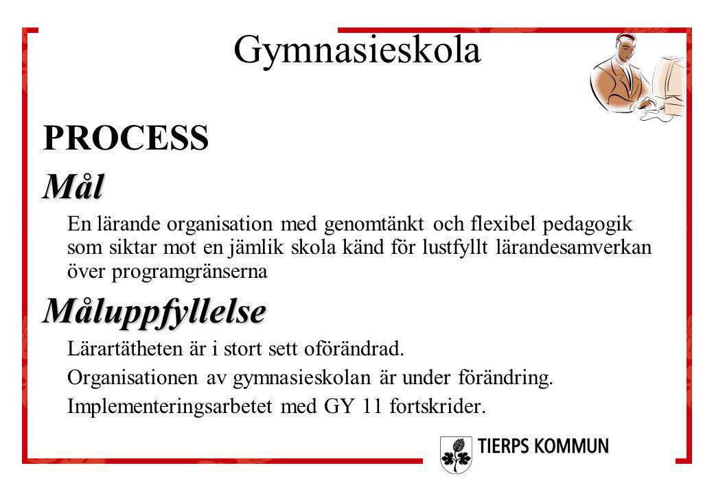 Gymnasieskola PROCESSMål En lärande organisation med genomtänkt och flexibel pedagogik som siktar mot en jämlik skola känd för lustfyllt lärandesamver