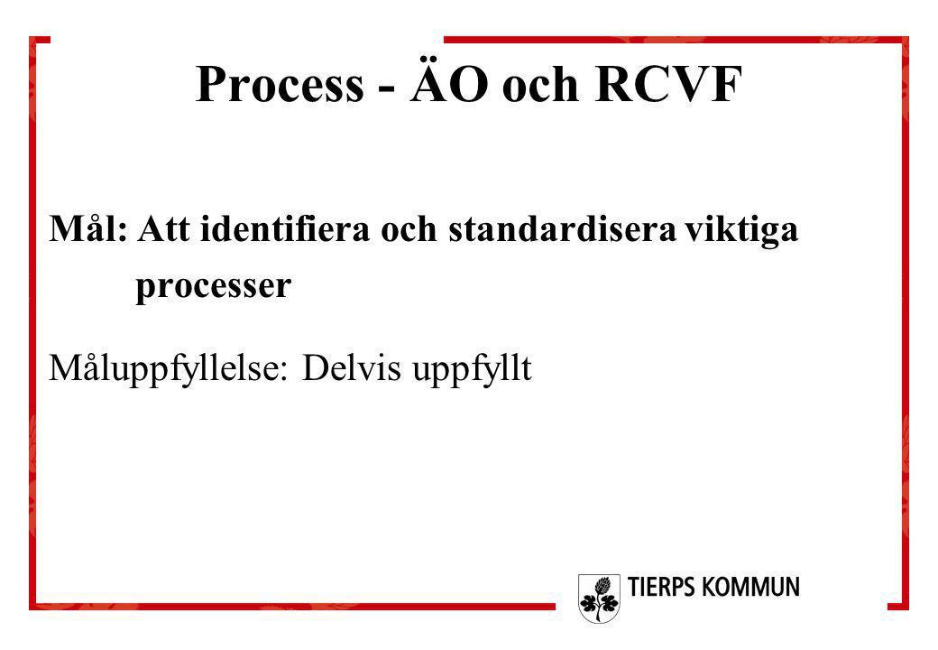 Process - ÄO och RCVF Mål: Att identifiera och standardisera viktiga processer Måluppfyllelse: Delvis uppfyllt