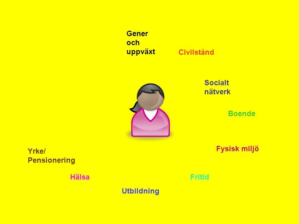 Gener och uppväxt Civilstånd Socialt nätverk Boende Fysisk miljö Fritid Utbildning Hälsa Yrke/ Pensionering
