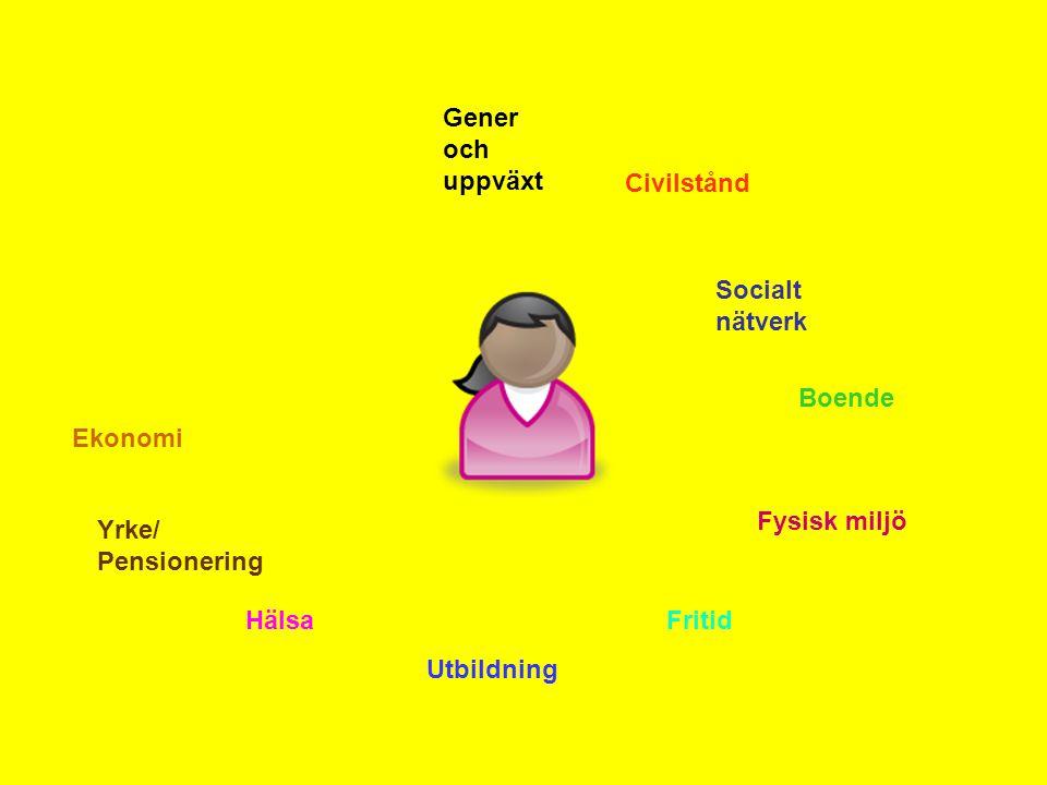 Gener och uppväxt Civilstånd Socialt nätverk Boende Fysisk miljö Fritid Utbildning Hälsa Yrke/ Pensionering Ekonomi
