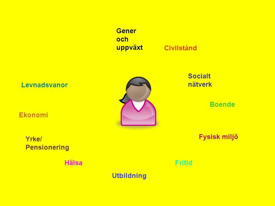 Gener och uppväxt Civilstånd Socialt nätverk Boende Fysisk miljö Fritid Utbildning Hälsa Yrke/ Pensionering Ekonomi Levnadsvanor