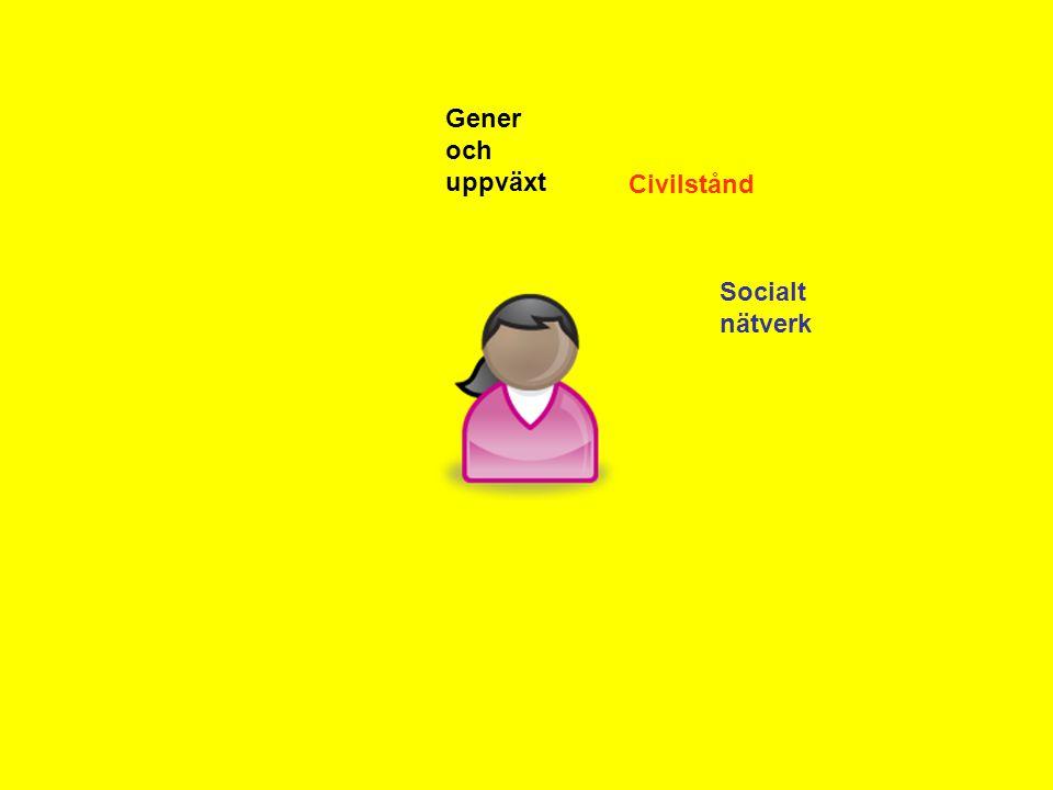 Gener och uppväxt Civilstånd Socialt nätverk