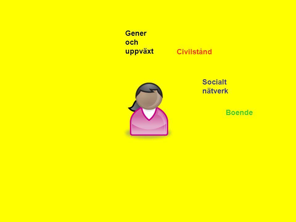 Gener och uppväxt Civilstånd Socialt nätverk Boende