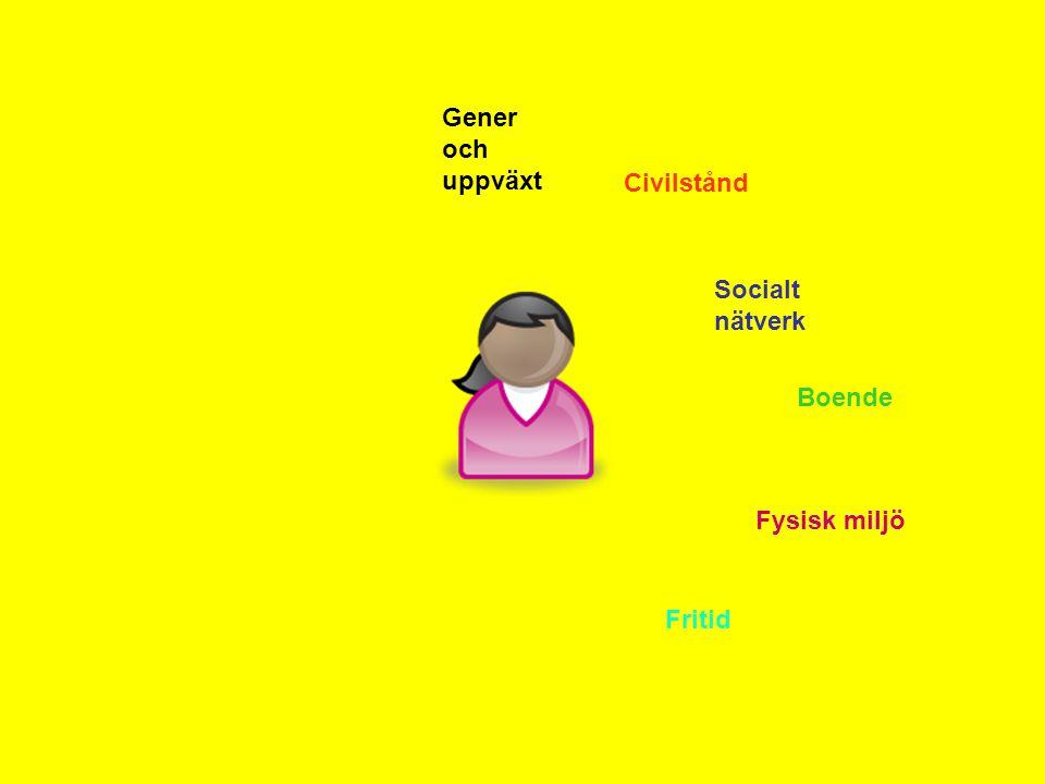 Gener och uppväxt Civilstånd Socialt nätverk Boende Fysisk miljö Fritid