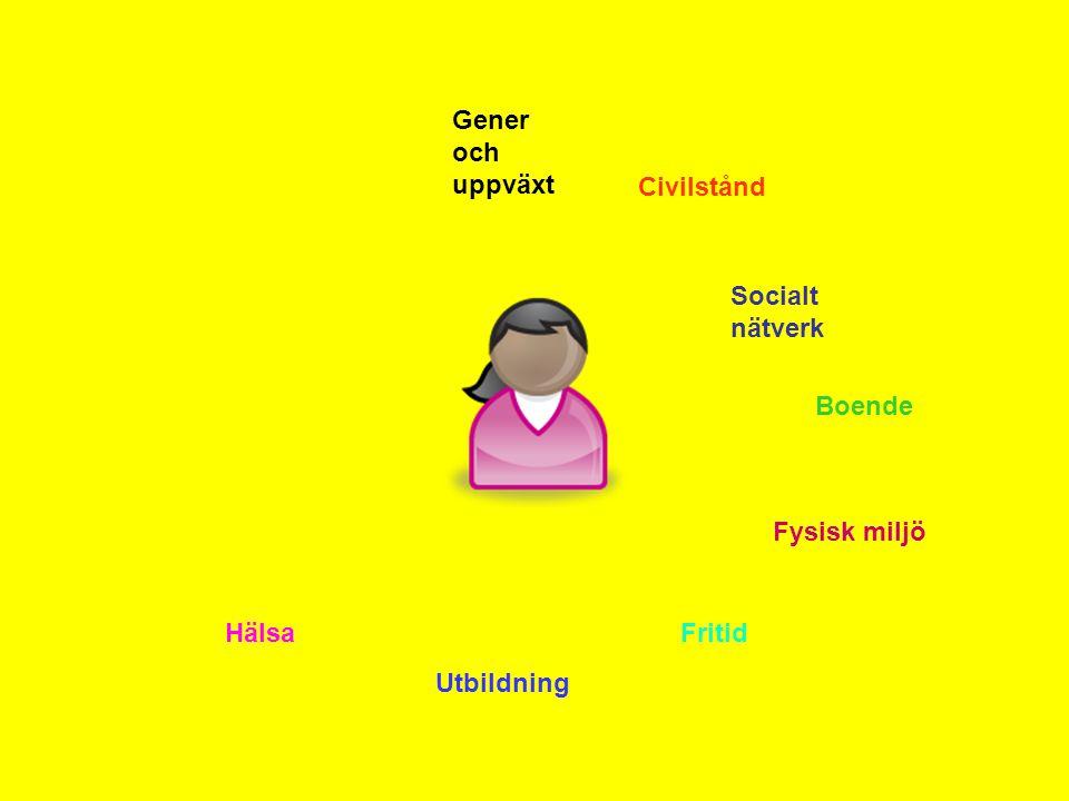 Gener och uppväxt Civilstånd Socialt nätverk Boende Fysisk miljö Fritid Utbildning Hälsa