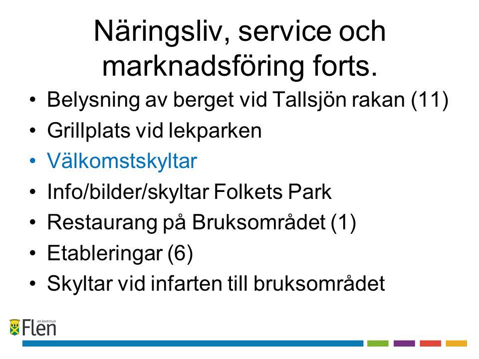 Näringsliv, service och marknadsföring forts. •Belysning av berget vid Tallsjön rakan (11) •Grillplats vid lekparken •Välkomstskyltar •Info/bilder/sky