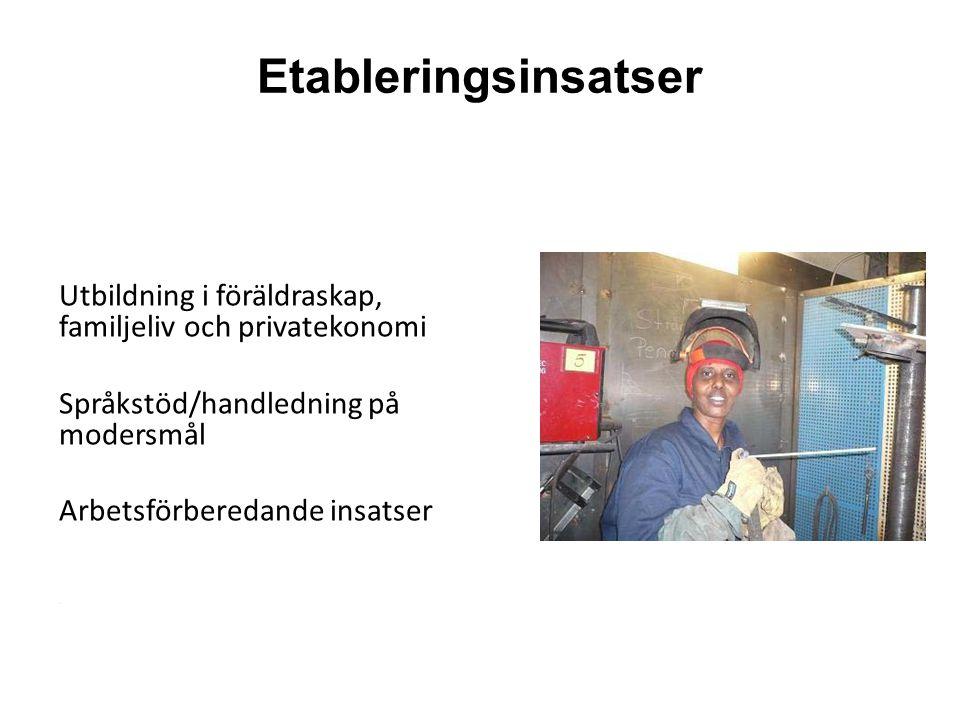 Etableringsinsatser Utbildning i föräldraskap, familjeliv och privatekonomi Språkstöd/handledning på modersmål Arbetsförberedande insatser.