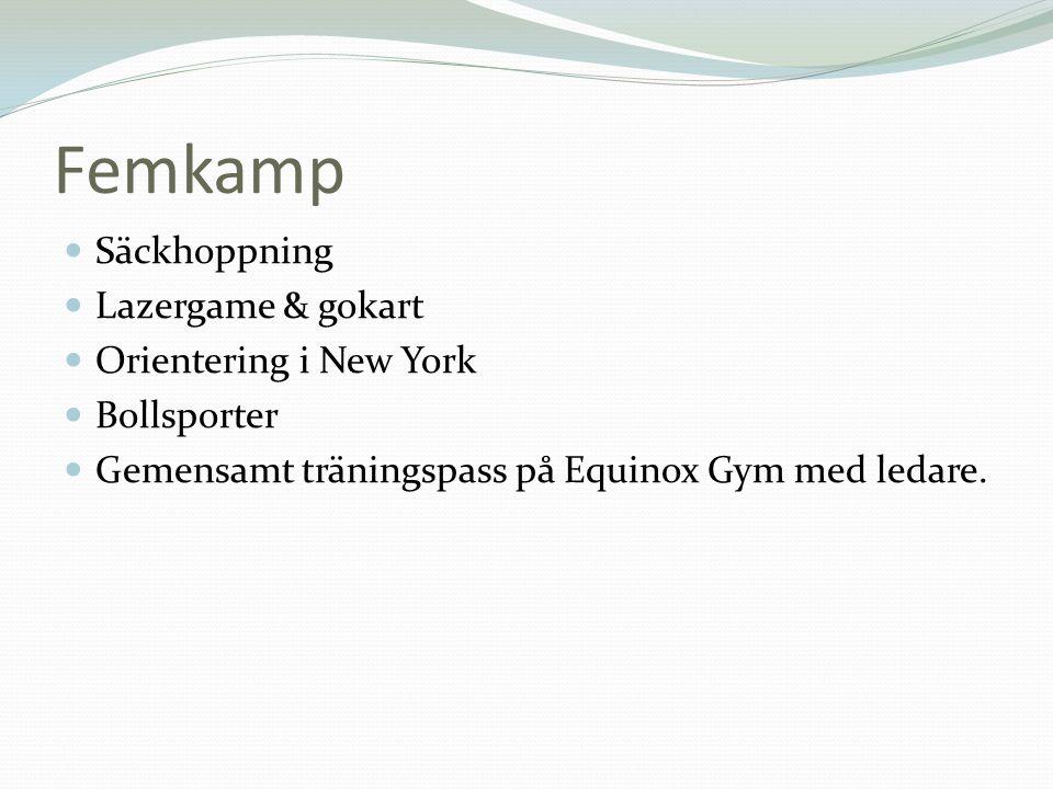 Femkamp  Säckhoppning  Lazergame & gokart  Orientering i New York  Bollsporter  Gemensamt träningspass på Equinox Gym med ledare.
