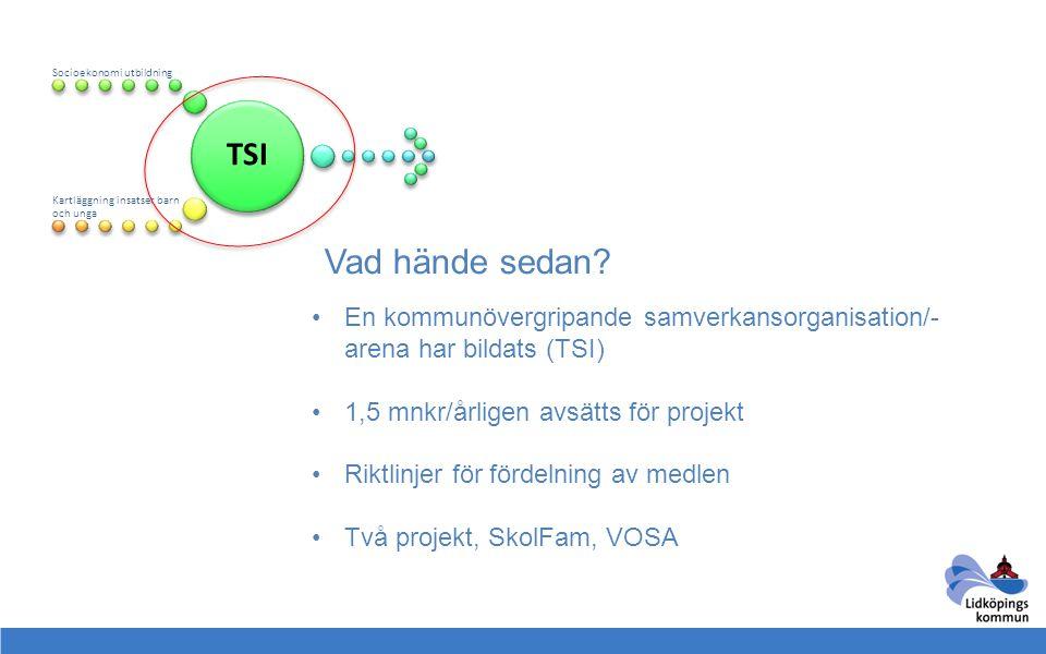 TSI Socioekonomi utbildning Kartläggning insatser barn och unga Vad hände sedan? •En kommunövergripande samverkansorganisation/- arena har bildats (TS