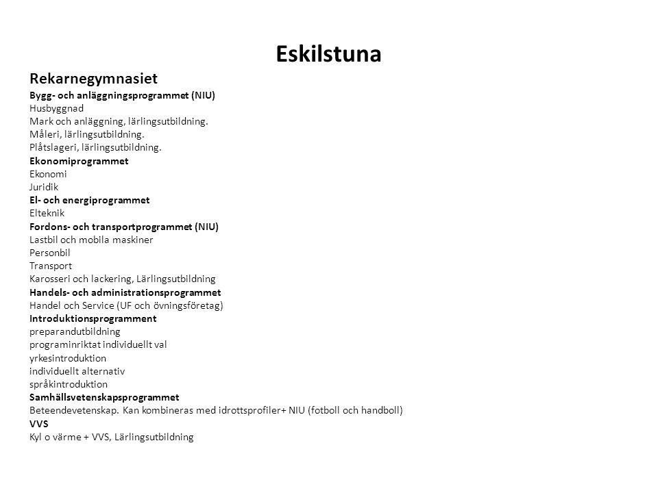 Eskilstuna Rekarnegymnasiet Bygg- och anläggningsprogrammet (NIU) Husbyggnad Mark och anläggning, lärlingsutbildning. Måleri, lärlingsutbildning. Plåt