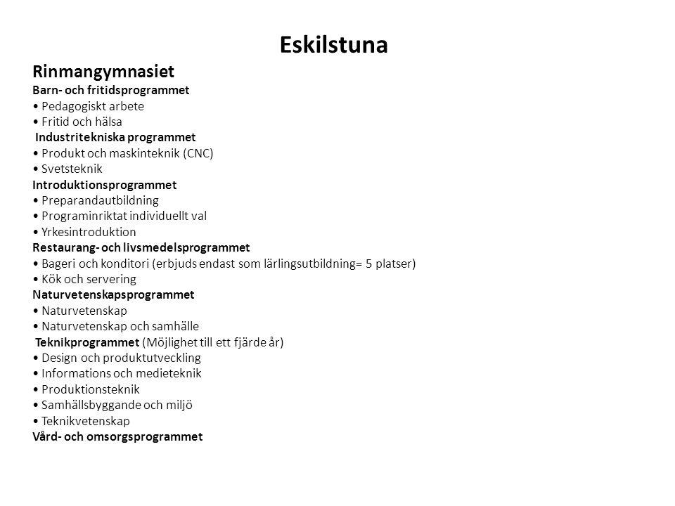 Eskilstuna Rinmangymnasiet Barn- och fritidsprogrammet • Pedagogiskt arbete • Fritid och hälsa Industritekniska programmet • Produkt och maskinteknik