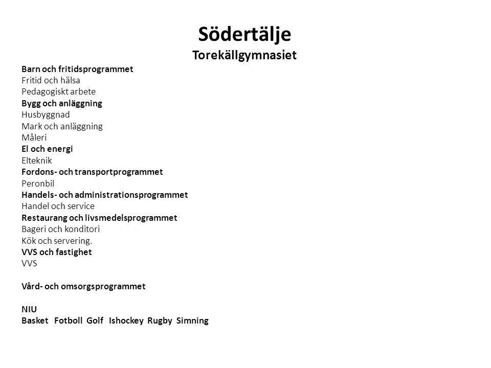 Södertälje Torekällgymnasiet Barn och fritidsprogrammet Fritid och hälsa Pedagogiskt arbete Bygg och anläggning Husbyggnad Mark och anläggning Måleri