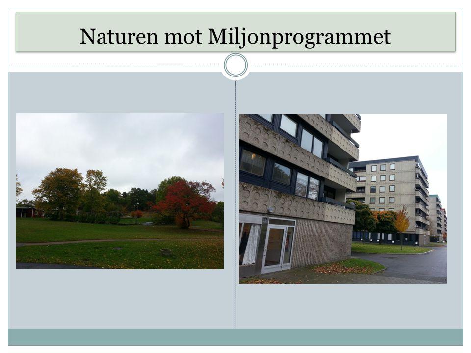 Naturen mot Miljonprogrammet