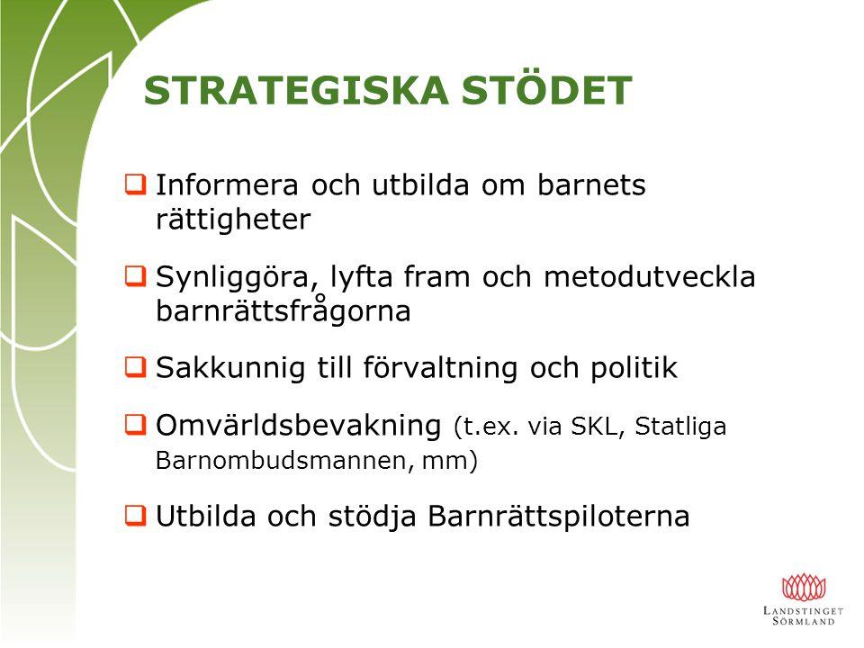 EXEMPEL PÅ STRATEGENS ARBETE  Sakkunnigt stöd till politik- och tjänstemannaledningen  Landstingets representant ang.
