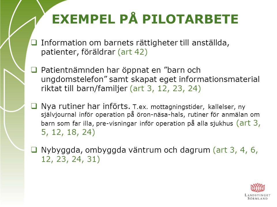 Forts.exempel på pilotarbeten…..