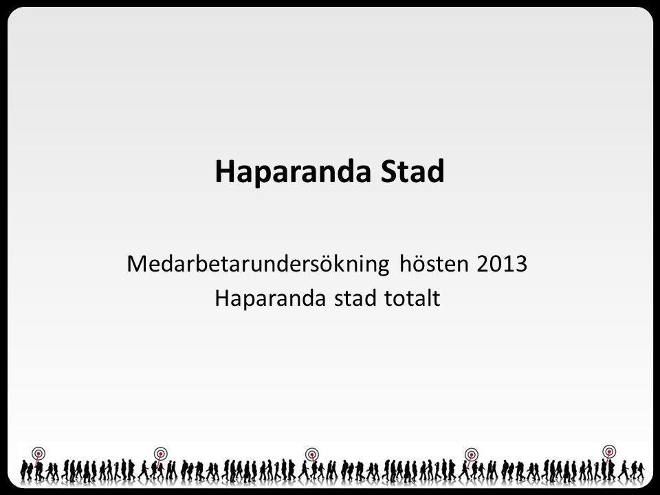 Haparanda Stad Medarbetarundersökning hösten 2013 Haparanda stad totalt