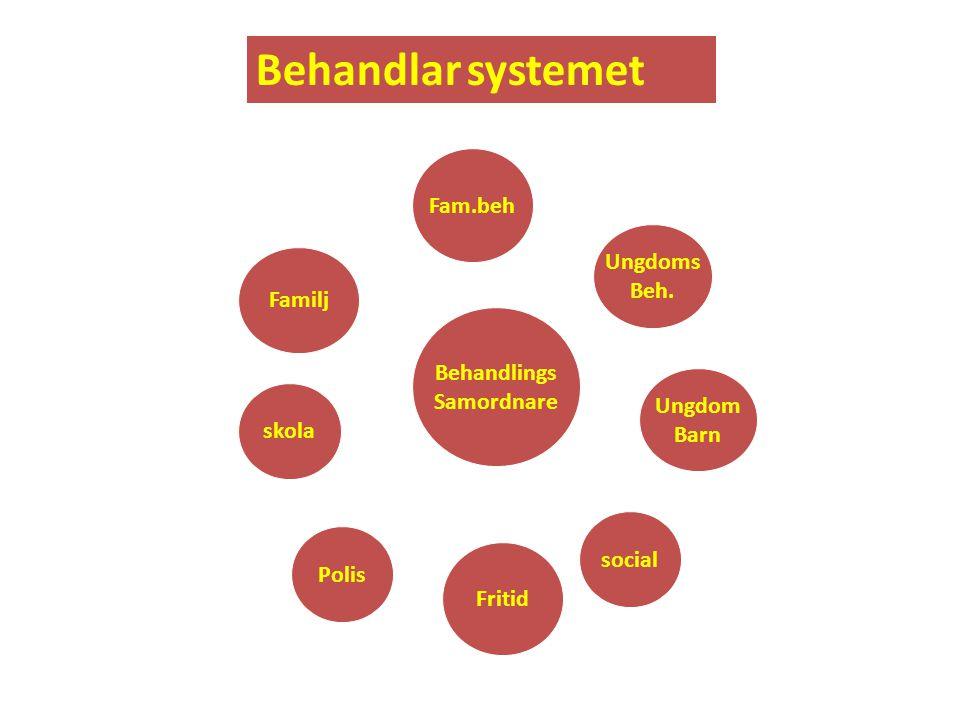 IHF • Engagemangsfasen  Undersökningsfasen  Beteendeförändringsfasen  Generaliseringsfasen (empowerment)