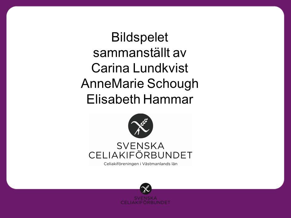 Bildspelet sammanst ä llt av Carina Lundkvist AnneMarie Schough Elisabeth Hammar