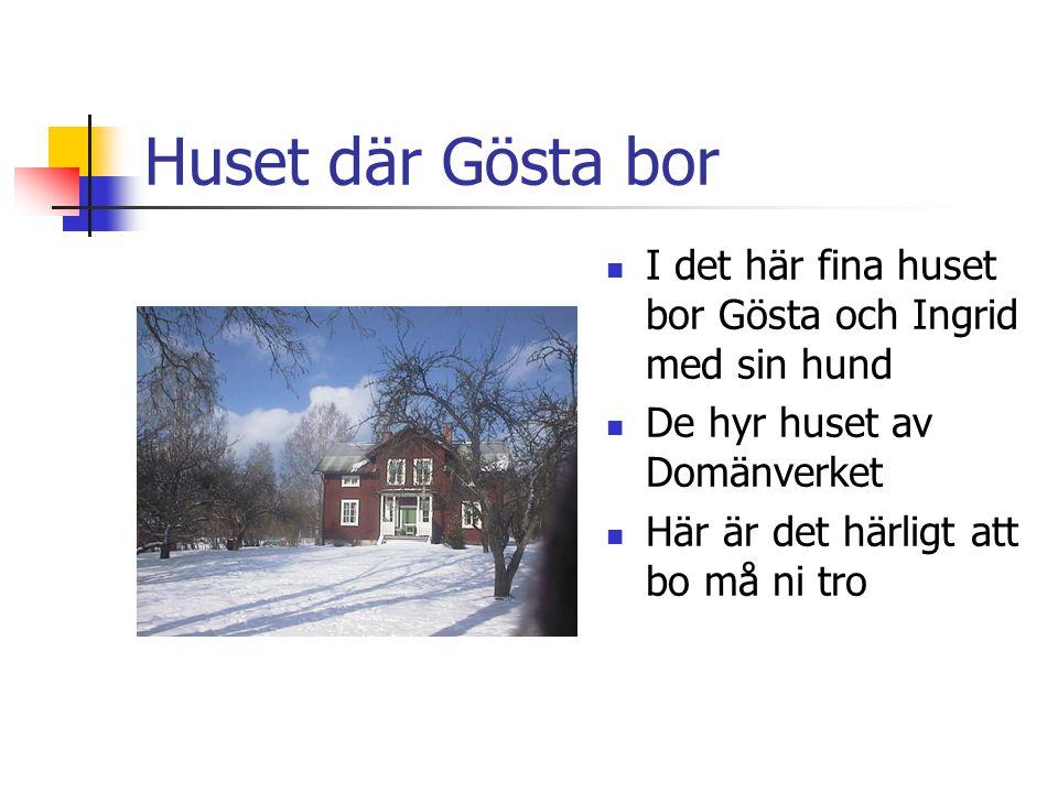 Huset där Gösta bor  I det här fina huset bor Gösta och Ingrid med sin hund  De hyr huset av Domänverket  Här är det härligt att bo må ni tro
