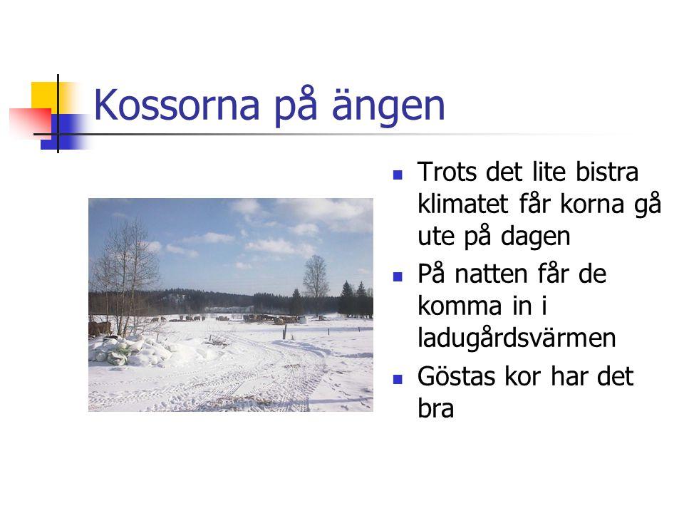 Nu vet du lite mer om Gösta  Tänk på honom när du dricker din mjölk  Göstas kor mår bra  Det hoppas vi att du också gör  önskar Per-Åke, Kerstin och Gert