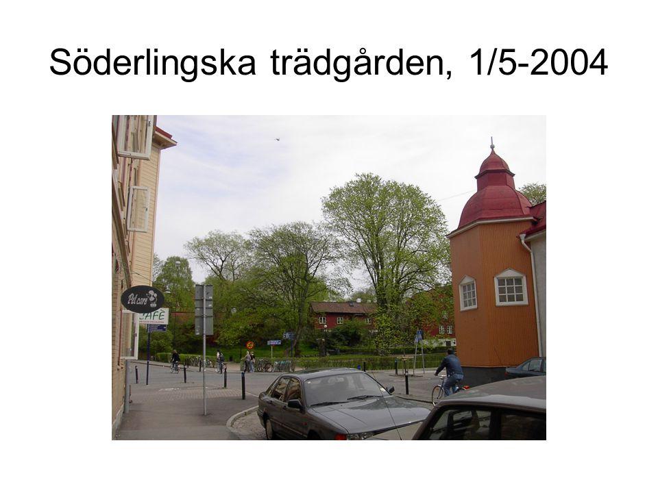 Söderlingska trädgården, 1/5-2004