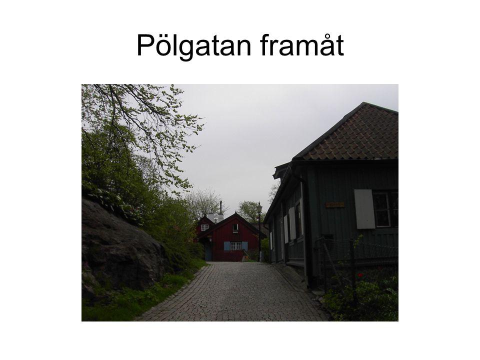 Pölgatan framåt