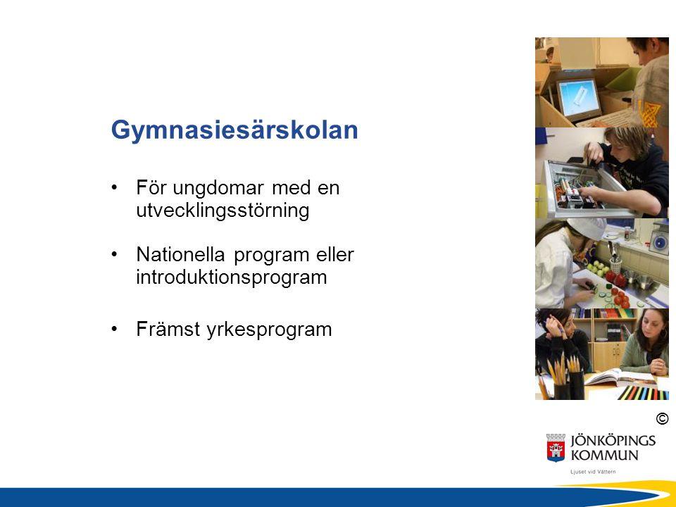 © •För ungdomar med en utvecklingsstörning •Nationella program eller introduktionsprogram •Främst yrkesprogram Gymnasiesärskolan