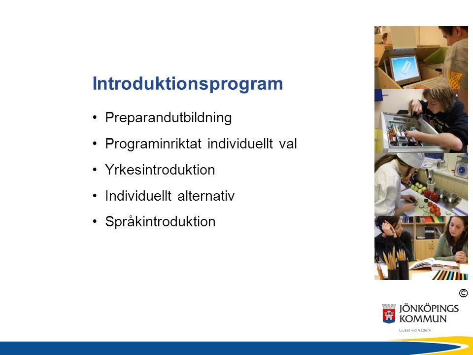 © Introduktionsprogram • Preparandutbildning • Programinriktat individuellt val • Yrkesintroduktion • Individuellt alternativ • Språkintroduktion
