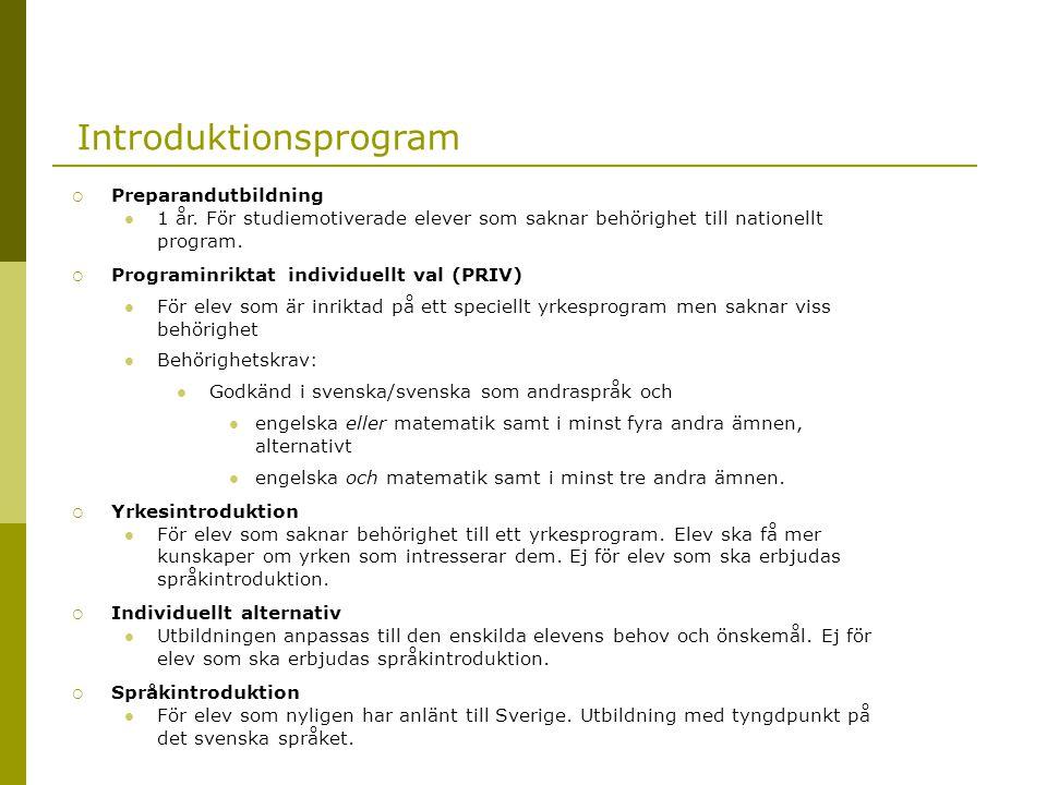 Introduktionsprogram  Preparandutbildning  1 år. För studiemotiverade elever som saknar behörighet till nationellt program.  Programinriktat indivi