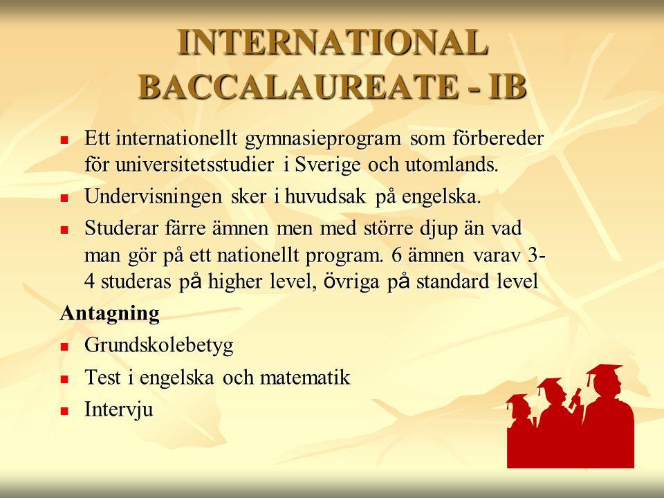 INTERNATIONAL BACCALAUREATE - IB  Ett internationellt gymnasieprogram som förbereder för universitetsstudier i Sverige och utomlands.  Undervisninge