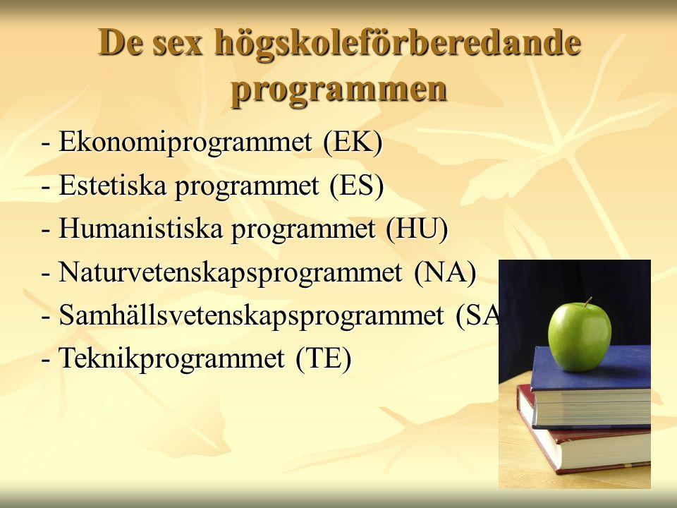De sex högskoleförberedande programmen - Ekonomiprogrammet (EK) - Estetiska programmet (ES) - Humanistiska programmet (HU) - Naturvetenskapsprogrammet