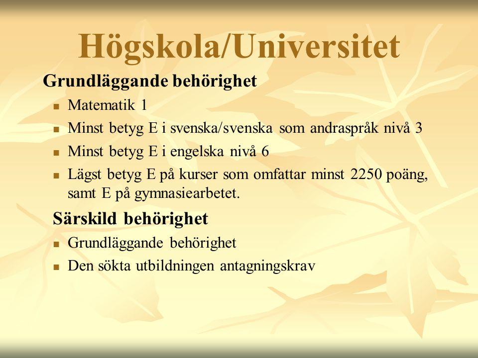 Högskola/Universitet Grundläggande behörighet  Matematik 1  Minst betyg E i svenska/svenska som andraspråk nivå 3  Minst betyg E i engelska nivå 6