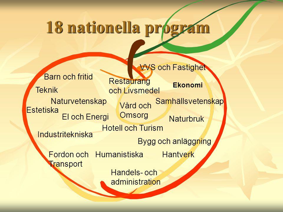 18 nationella program Barn och fritid Samhällsvetenskap El och Energi Ekonomi Naturvetenskap Vård och Omsorg Naturbruk Restaurang och Livsmedel Indust