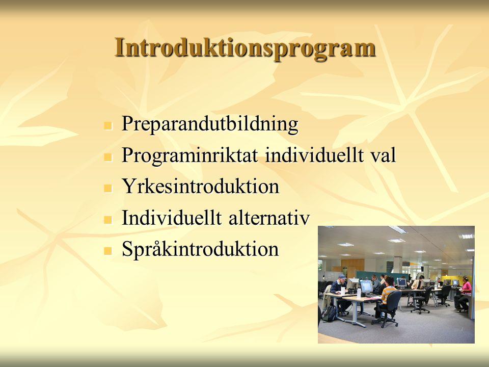 Introduktionsprogram  Preparandutbildning  Programinriktat individuellt val  Yrkesintroduktion  Individuellt alternativ  Språkintroduktion
