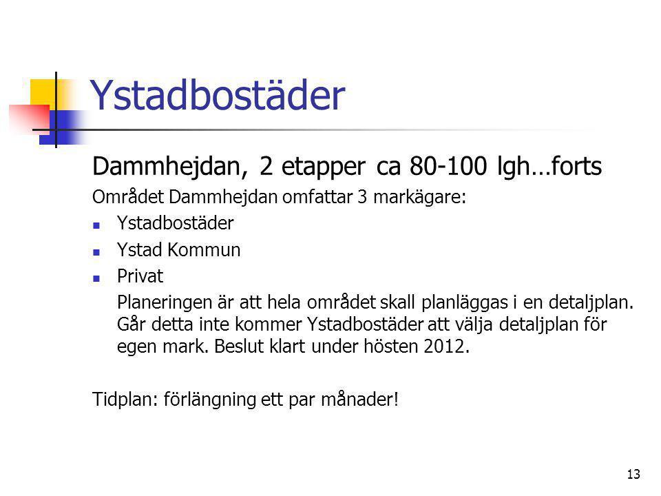 13 Ystadbostäder Dammhejdan, 2 etapper ca 80-100 lgh…forts Området Dammhejdan omfattar 3 markägare:  Ystadbostäder  Ystad Kommun  Privat Planeringe