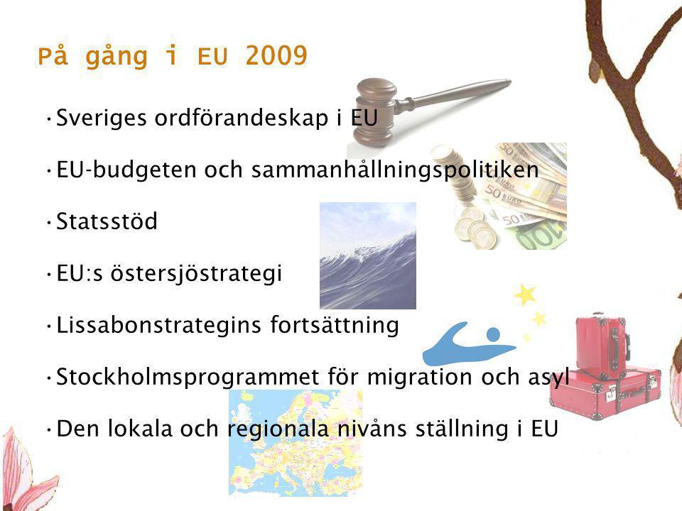 12 •Sveriges ordförandeskap i EU •EU-budgeten och sammanhållningspolitiken •Statsstöd •EU:s östersjöstrategi •Lissabonstrategins fortsättning •Stockholmsprogrammet för migration och asyl •Den lokala och regionala nivåns ställning i EU På gång i EU 2009