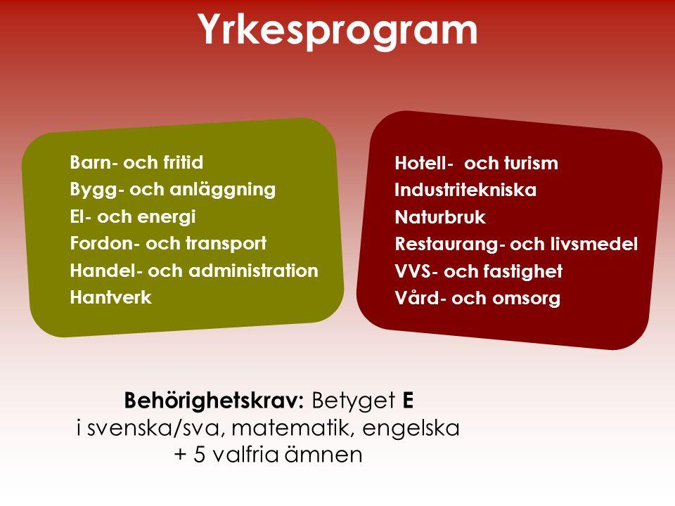Barn- och fritid Bygg- och anläggning El- och energi Fordon- och transport Handel- och administration Hantverk Yrkesprogram Hotell- och turism Industr