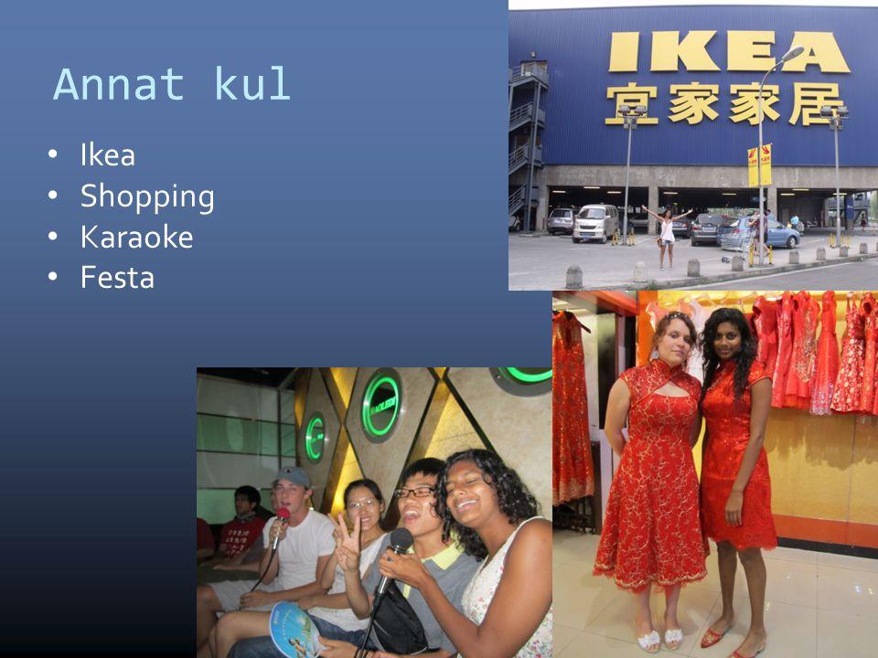 Annat kul • Ikea • Shopping • Karaoke • Festa