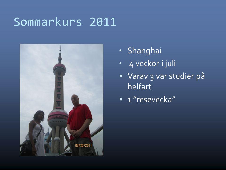 Sommarkurs 2011 • Shanghai • 4 veckor i juli  Varav 3 var studier på helfart  1 resevecka